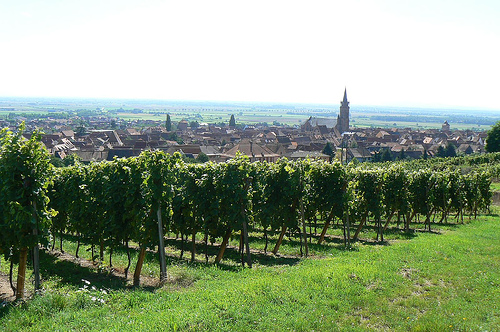 Burdeos, ruta del vino francesa