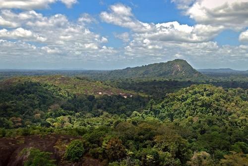 Visitar las selvas del interior de Suriname