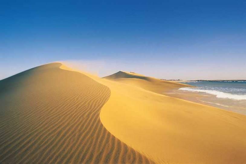 Cabo Polonio: un paraíso en la costa de Uruguay