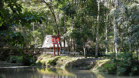 Parque Tingo Maria